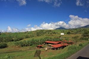 COATA RICAN PHOTO (4)